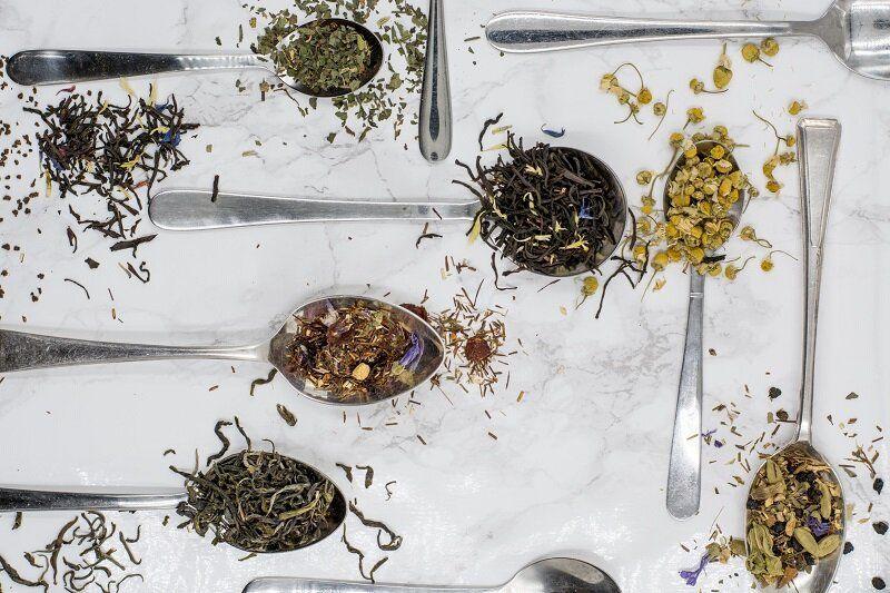 36 plantas medicinales para infusiones que mejoran nuestra salud
